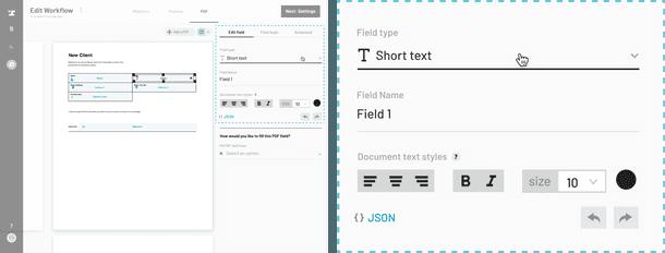 New PDF field 2