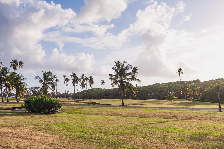 Magdalena Grand Beach and Golf Resort