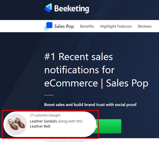 Beeketing sales notifications