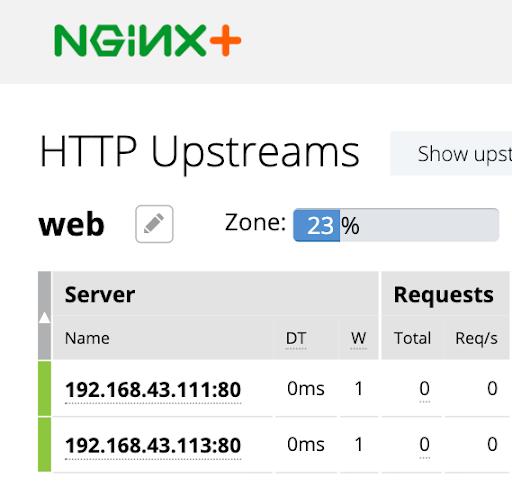 NGINX statistics page displays two serves