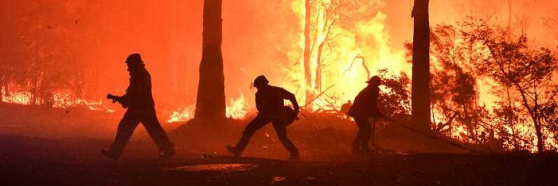 Bushfire relief