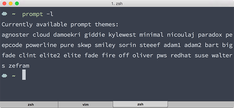 output จาก prompt -l