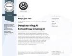 DeepLearning.AI TensorFlow Developer Specialization