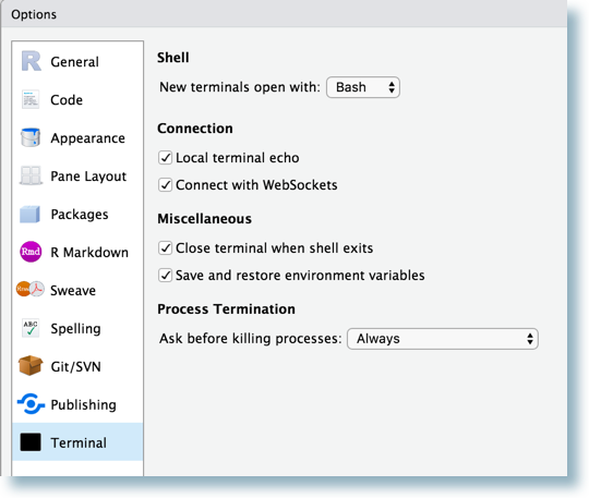 Terminal Options