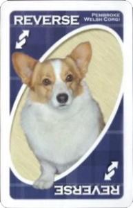 American Kennel Club: Herding Group Blue Uno Reverse Card
