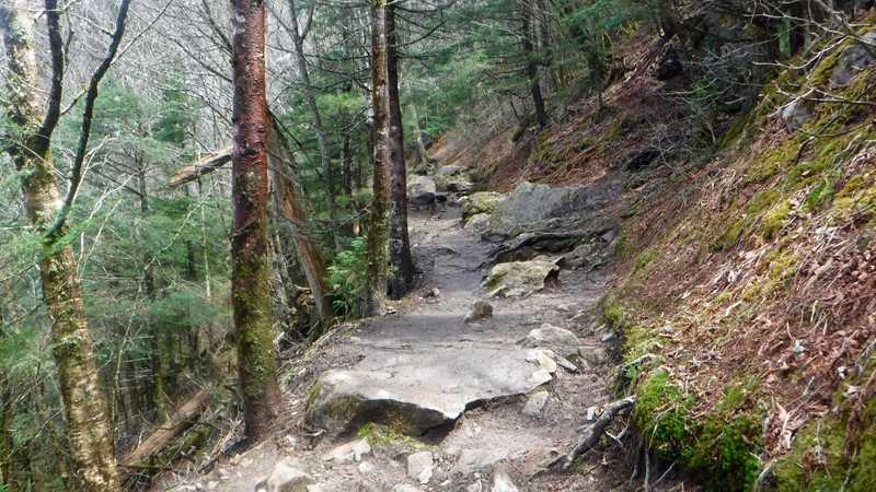 Rocky trail after Newfound Gap