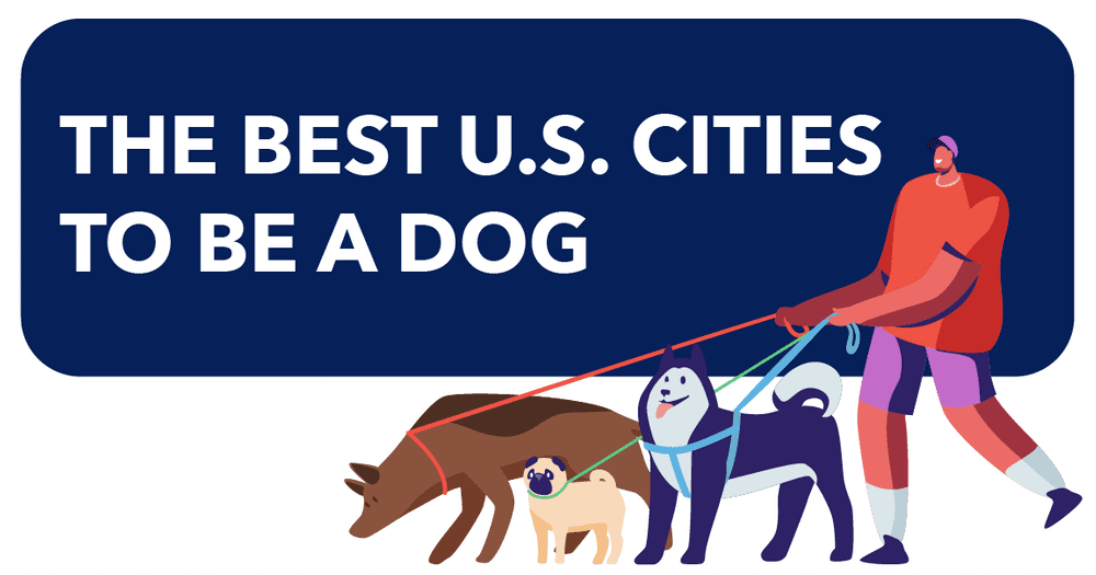 Intro image for the best U.S. cities to be a dog