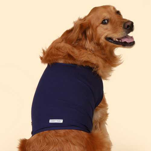 Vest for Dogs