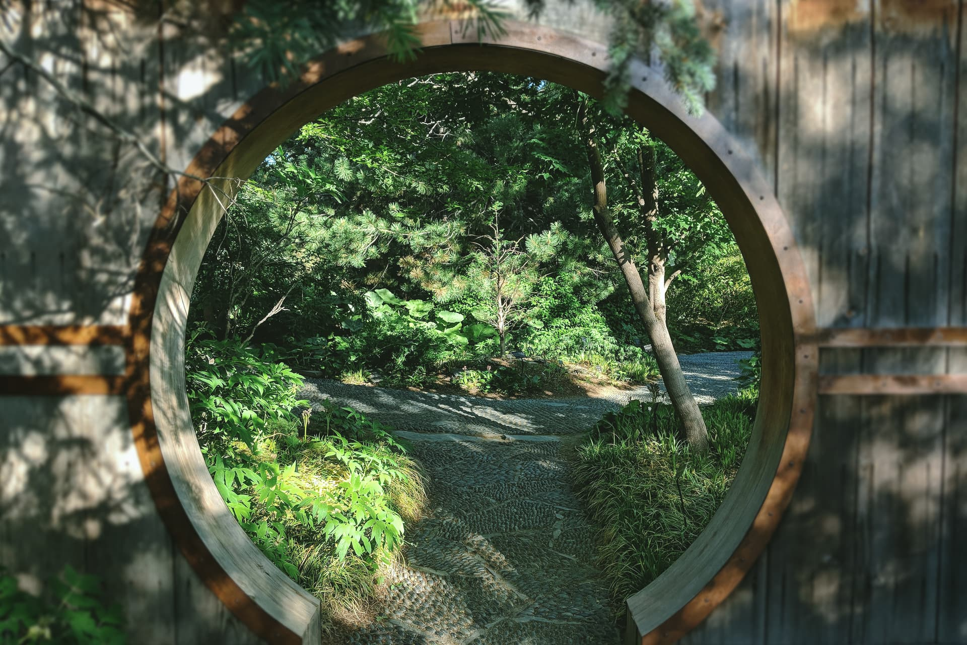 The view through a round, Chinese-style garden entrance. On the other side of the entrance, a stony path through the garden splits into two, heading off either side of the frame.