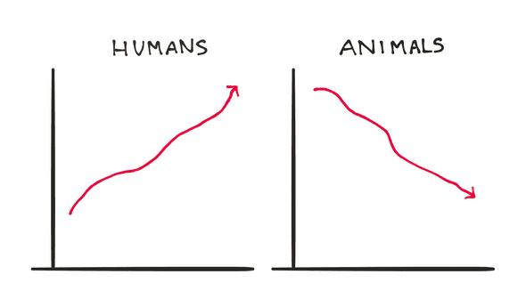 humans killed animals