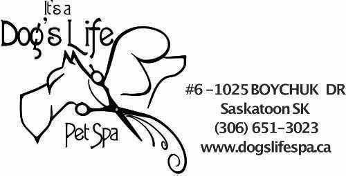 It's a Dog's Life Logo