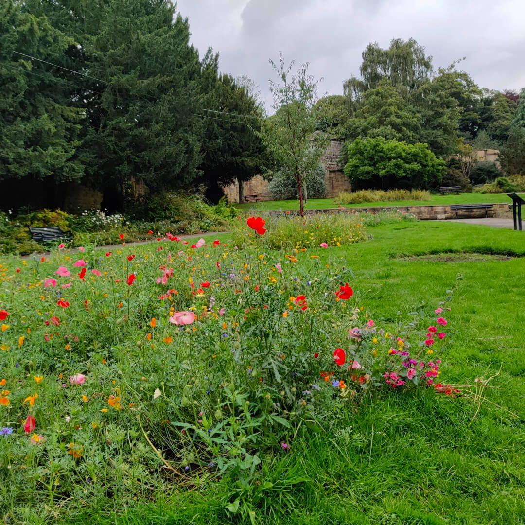 Horsforth Hall Park flowers