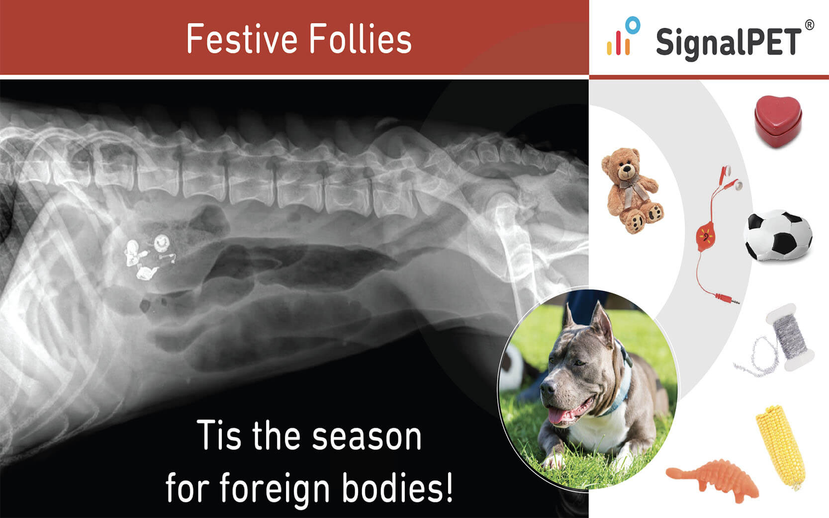festive_follies_blog