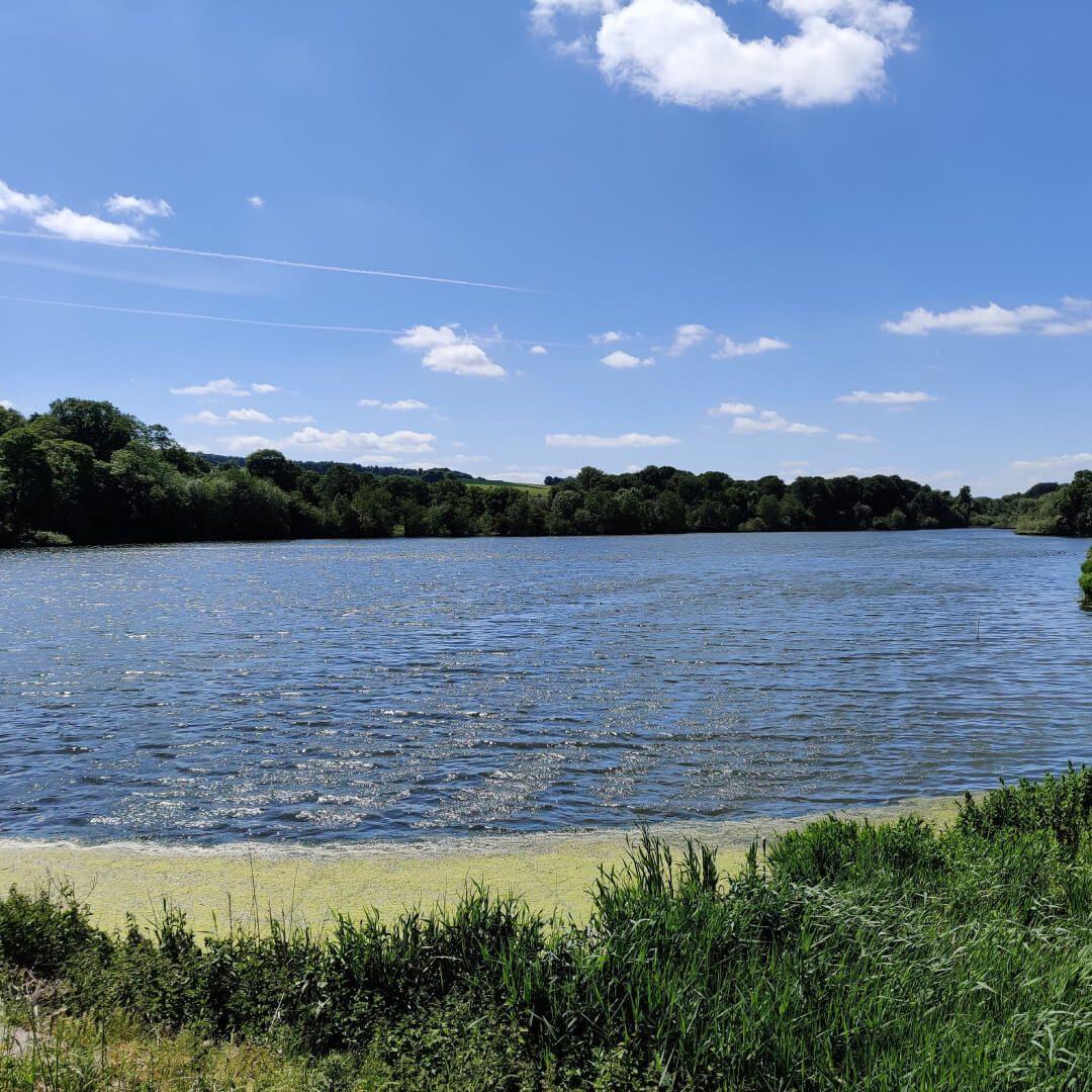 Lake at Yorkshire Sculpture Park