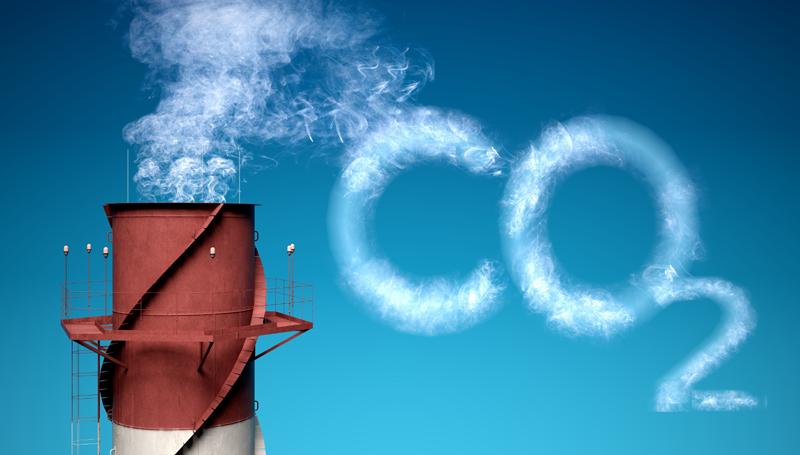 Imagem em destaque para o artigo: Créditos de carbono: entenda tudo sobre o tema