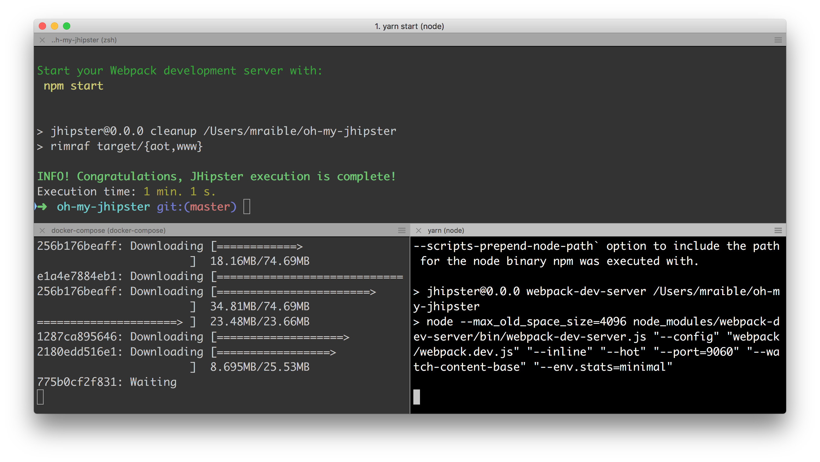 iTerm 2 with Oh My Zsh