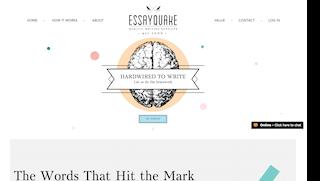 essayquake.com main page