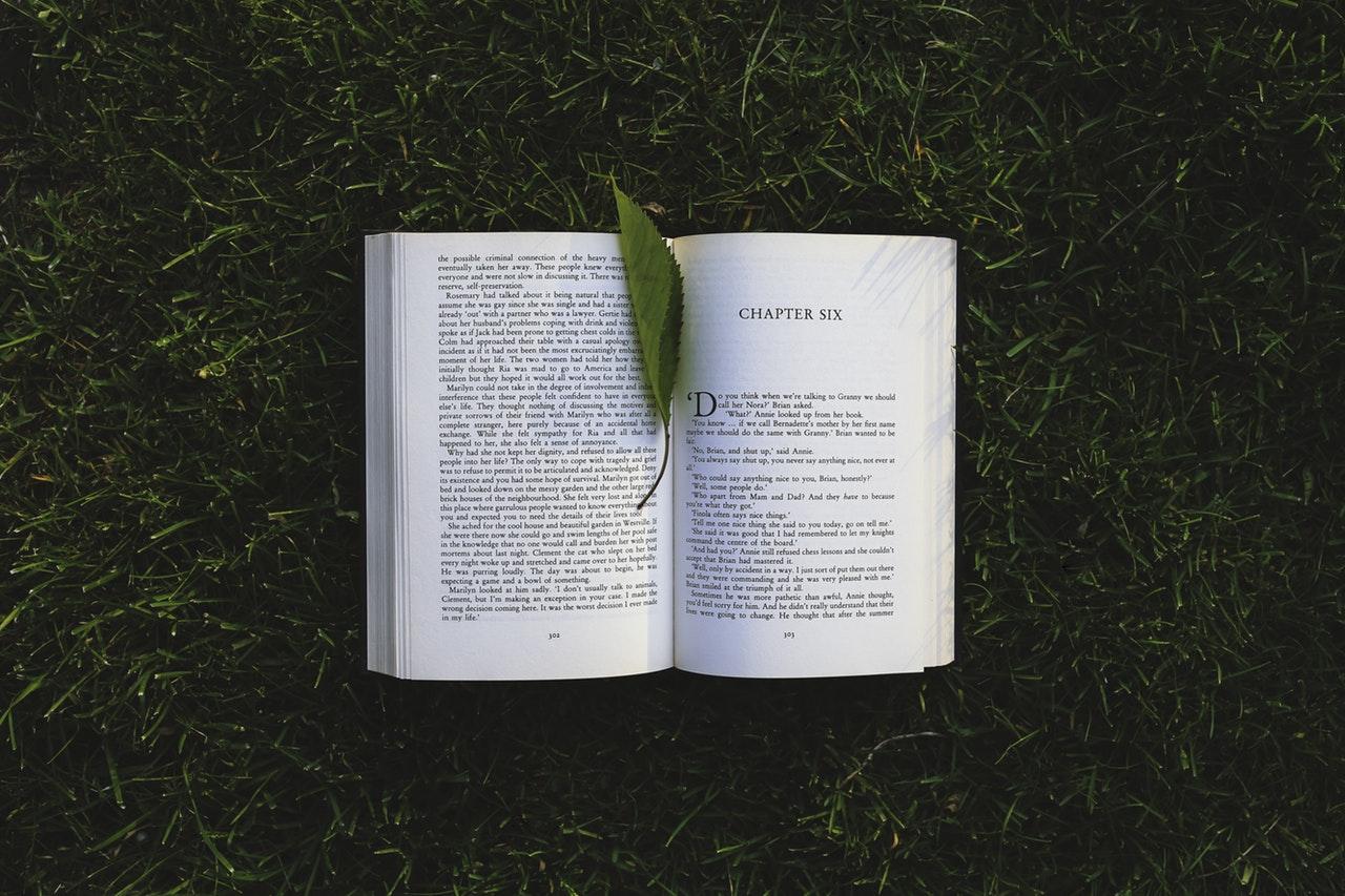 A leaf reading a book