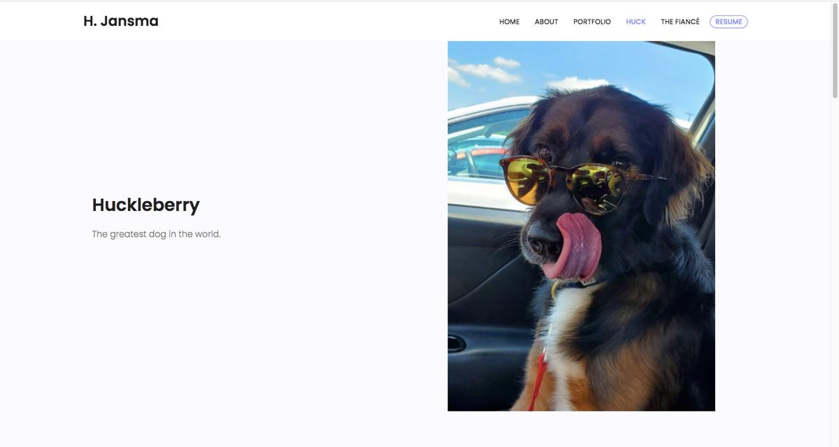 A picture of a dog featured on Harrison Jansma's data analytics portfolio website