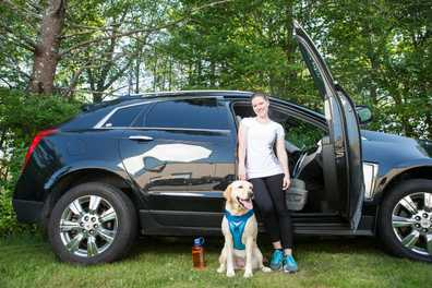 8 Tips for Summer Travel With Your Dog