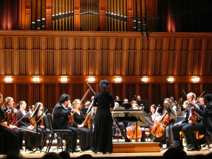 Tuning the orchestra as concertmaster