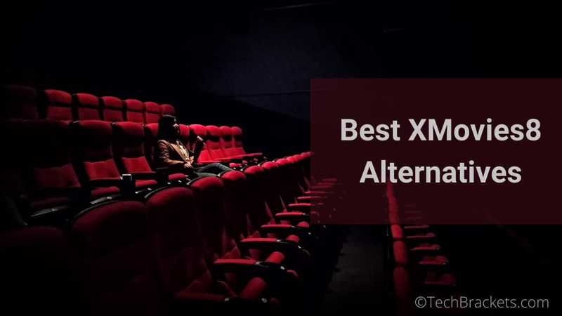 13 Best XMovies8 Alternatives of 2020