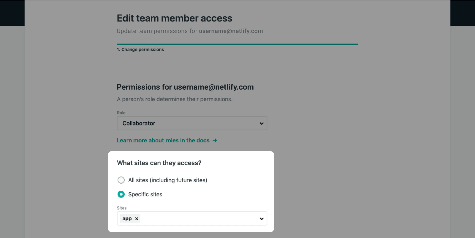 Owners can select the specific sites that a team member can access.