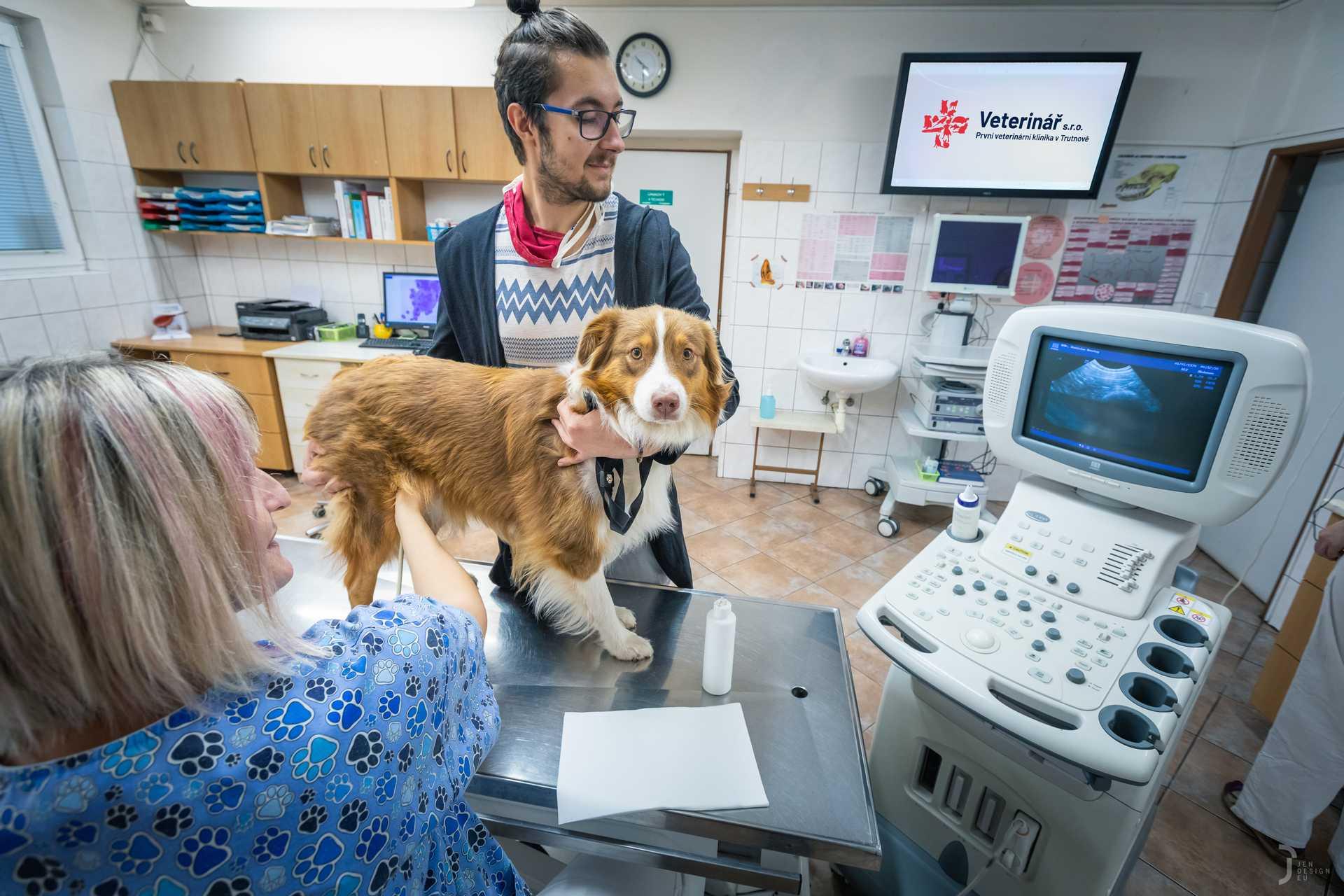 ultrazvukové vyšetření