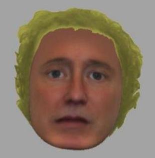 lettuceHair.jpg