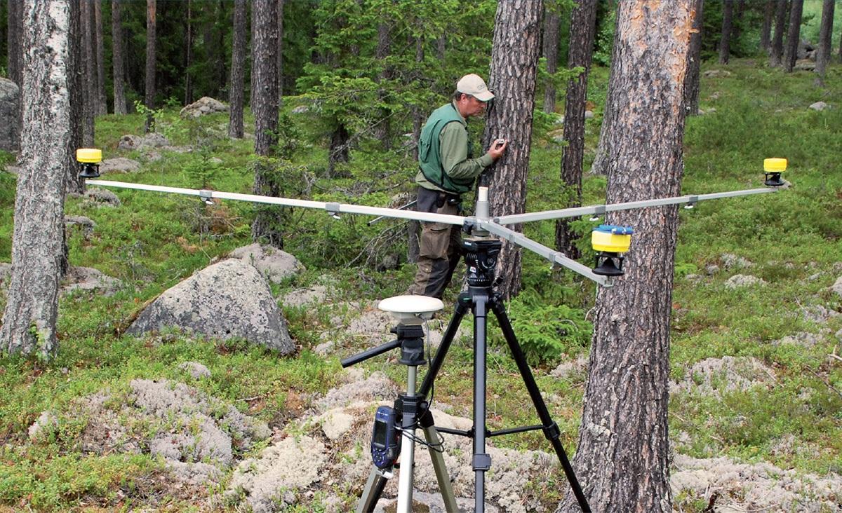 strumenti e rilievi per silvicoltura