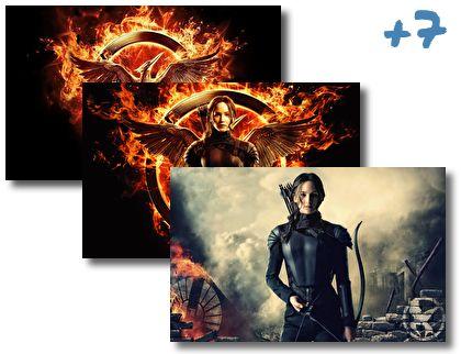The Hunger Games Mockingjay theme pack
