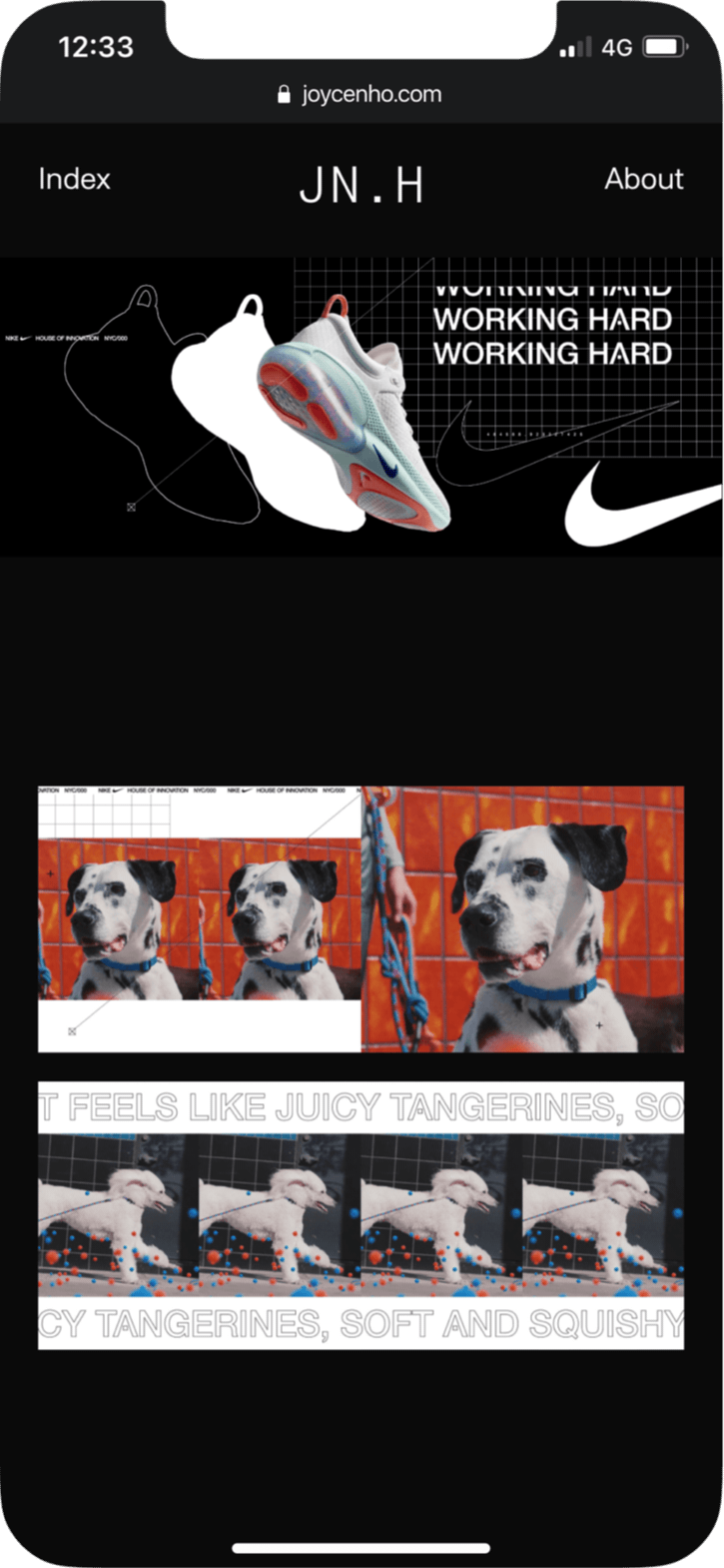 Joyce N Ho website mobile screenshot Nike