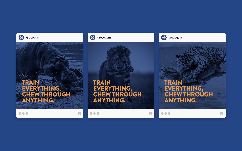 Instagram post design for Greco Gum e-commerce brand