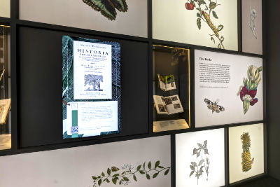 A photo featuring a wall from the lobby exhibition, with books in a wall showcase and a display featuring digitised images from books.