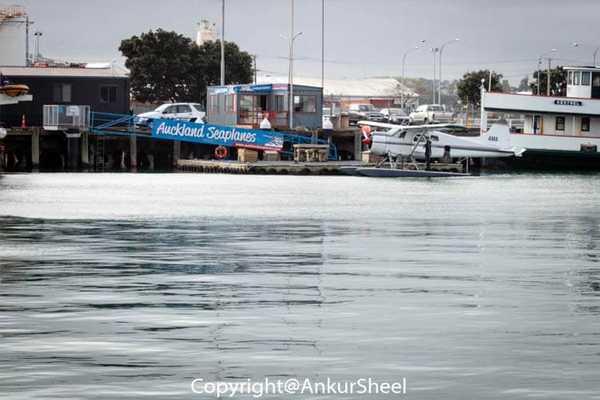 Auckland_Seaplanes-1