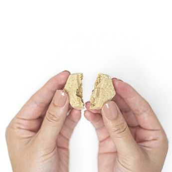 Bites - Creamy Coconut Healthy Coat Restore Bites