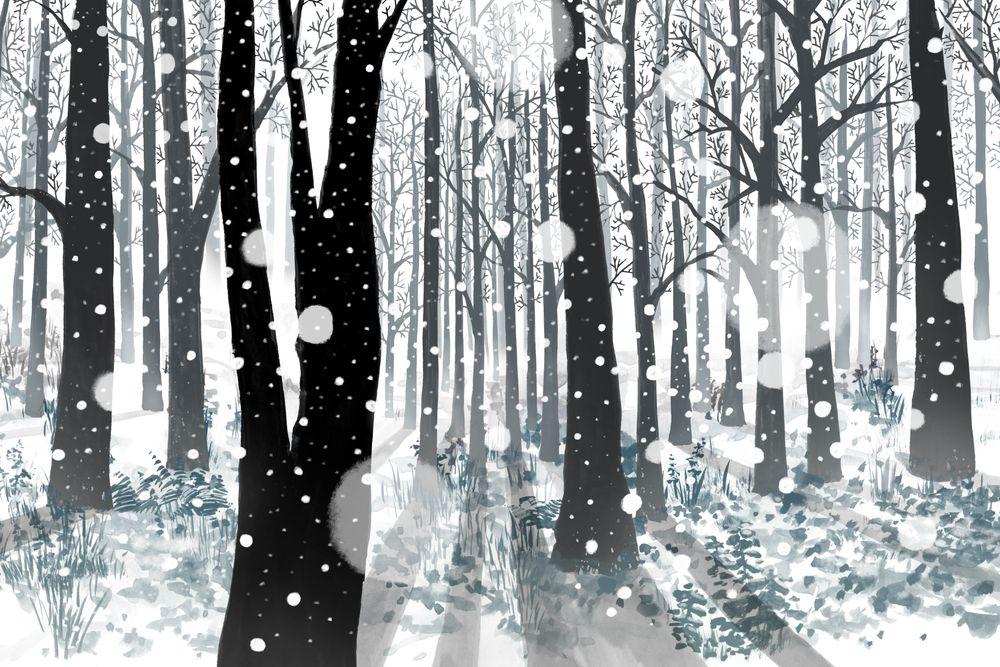 Seasons (winter)