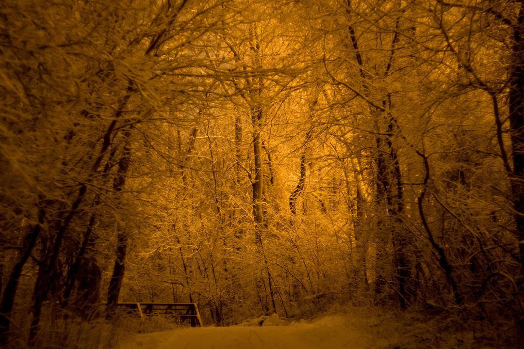 Oakledge Path