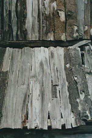 Wood 10a