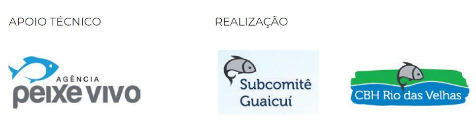 CBH Rio das Velhas :: Subcomitê Guaicuí :: Agência PEIXE VIVO
