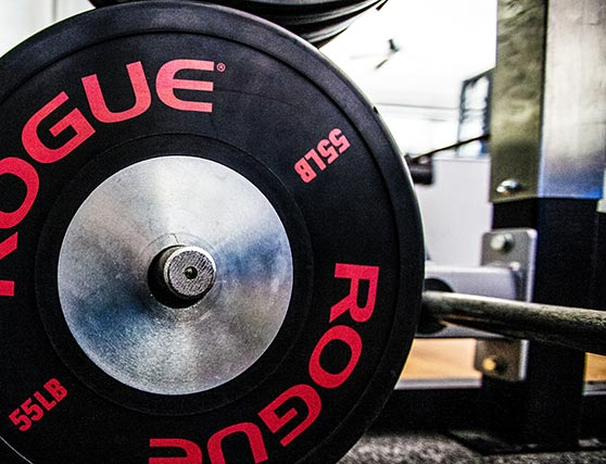 Rogue weight plates