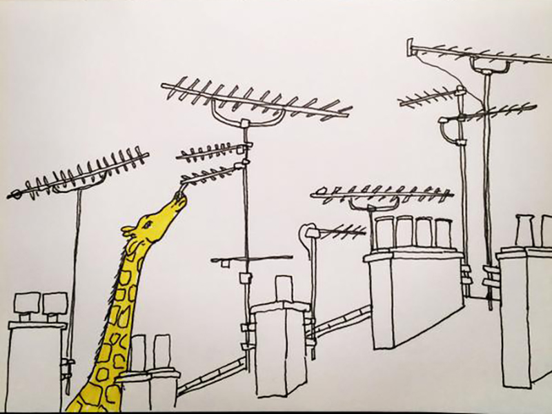 Illustration projects, urban giraffes