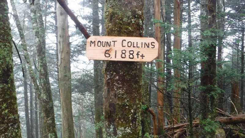 Mt. Collins