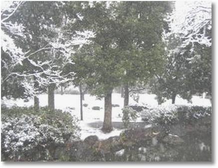 Frozen fantasy Tokyo park
