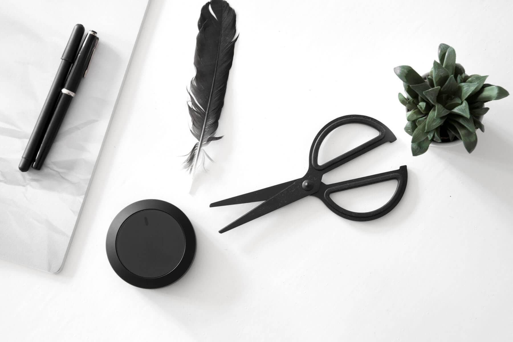Nuimo black surrounded with black design objects feather, pens, cisors, green plants