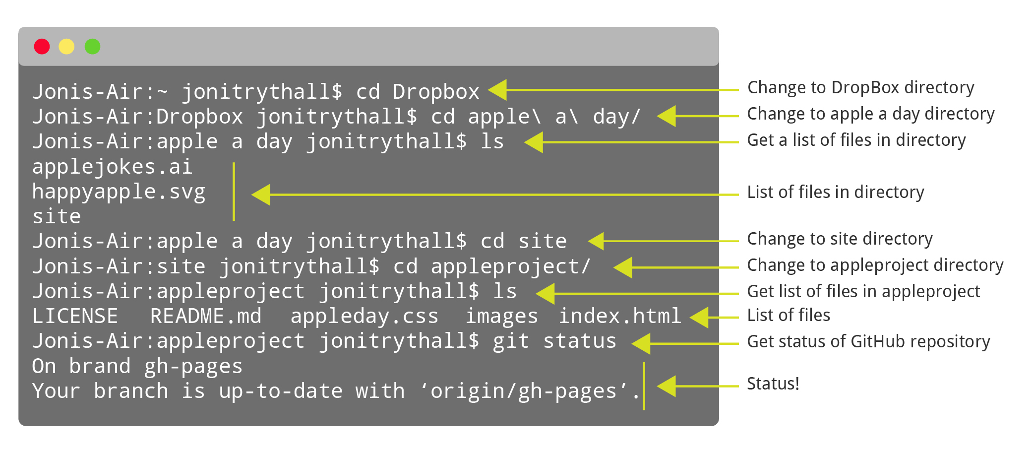 Preview of command line process to find Git repository and check status