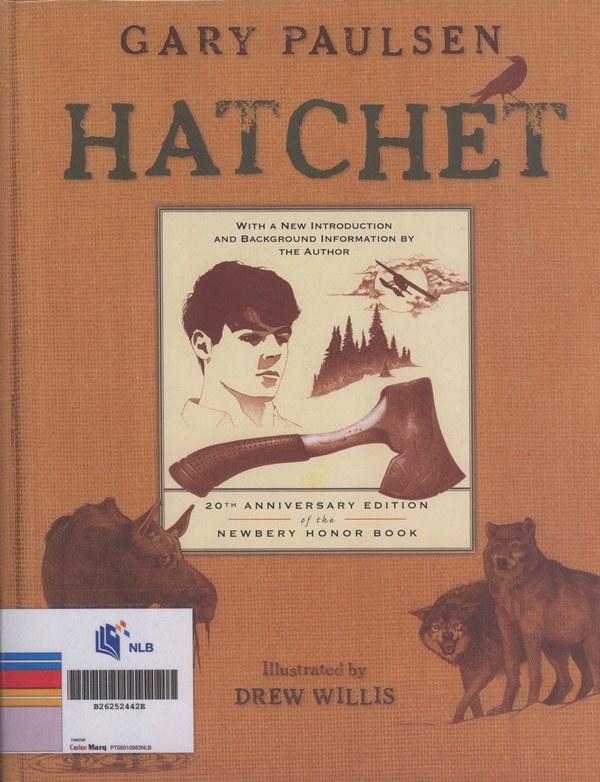 Hatchet image