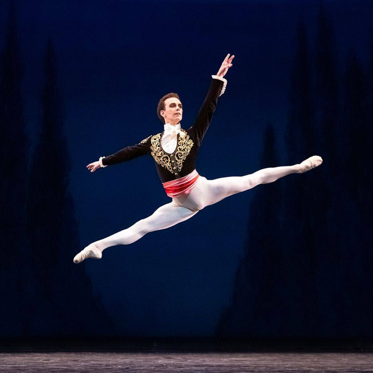 Dancer in white tights and black embroidered jacket leaps against silhouetted fir trees and night sky.