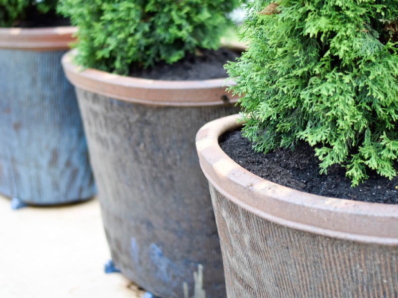 Planters and Pottery