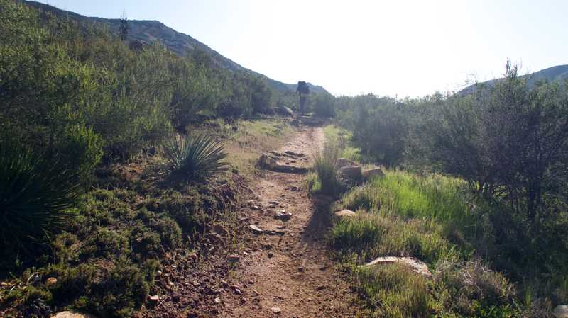 Climb out of Hauser Canyon